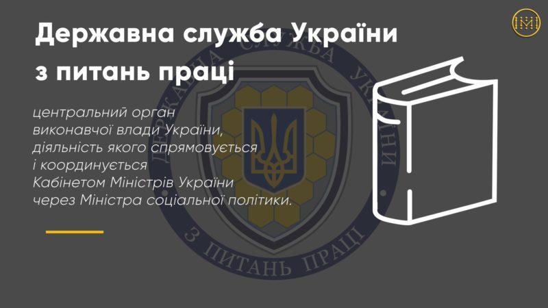 Що перевіряє Державна служба України з питань праці