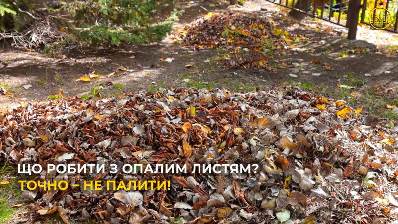 «Торецьк, рятуй природу – компостуй!»